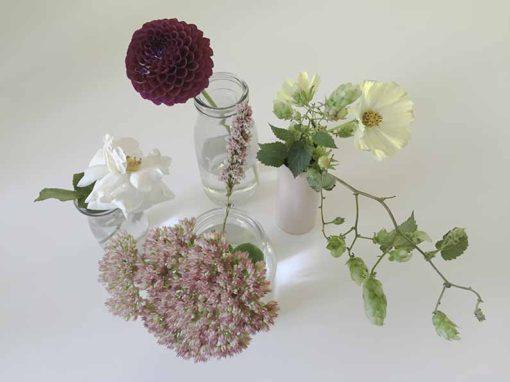 blomster-september