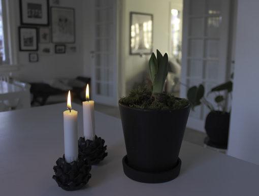 snart-jul_amarylis_soestrene-grene