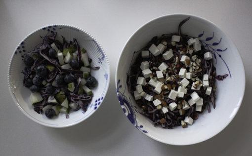 salater-med-roedkaal